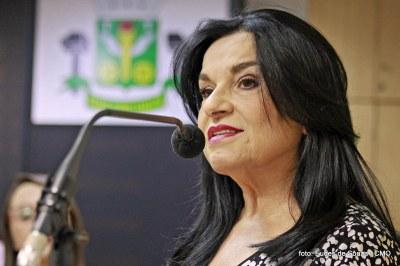 Nova Mesa Diretora 2019-2020 (16).JPG