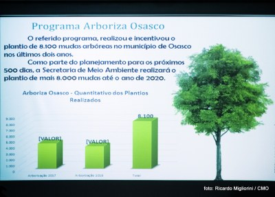 Arborização Urbana (21).jpg