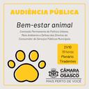 Bem-Estar animal: Câmara realiza audiência sobre o tema nesta 2ª