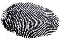 Plantão da biometria: cartórios eleitorais abrirão no sábado (13)